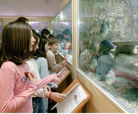 enfants expo